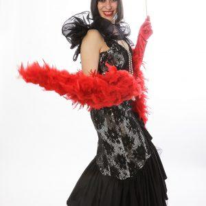 Moulin rouge et noir