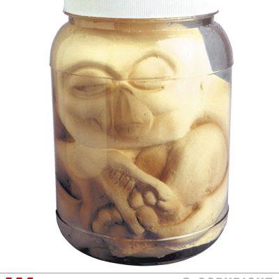 Pot foetus alien