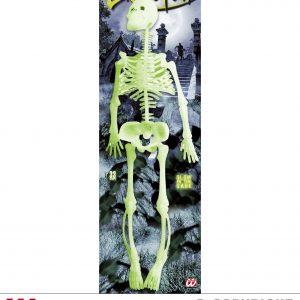 Squelette phosphorescent 35cm