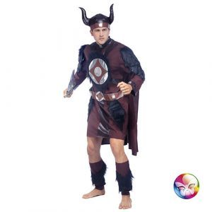 Déguisement viking homme