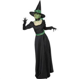 Costume femme affreuse sorcière