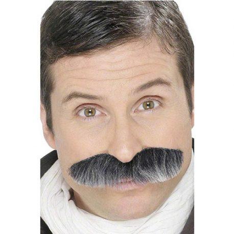 Moustache militaire grise