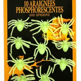 10 araignees phosphorescentes