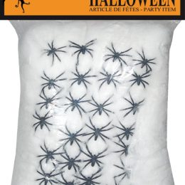 toile 500g avec 25 araignées