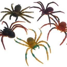 araignées couleur