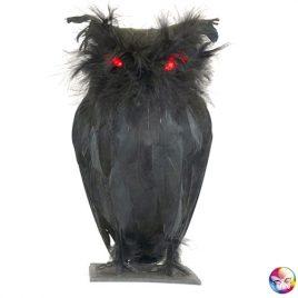 Chouette noire yeux lumineux en plumes