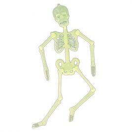 Squelette articulé phosphorescent