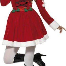 Costume de Mère Noël houx